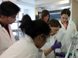 Dr. Gyna Sroga (seated) teaches assays for biochemical analysis of collagen crosslinks to (clockwise from right): Ashley Lloyd, Michelle Chin, Vinny Wang, Prof. Donnelly